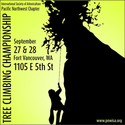 Pacific North West tree climbing championships 2014