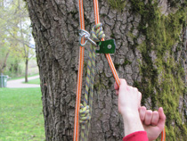 Pulley tending a prussik hitch