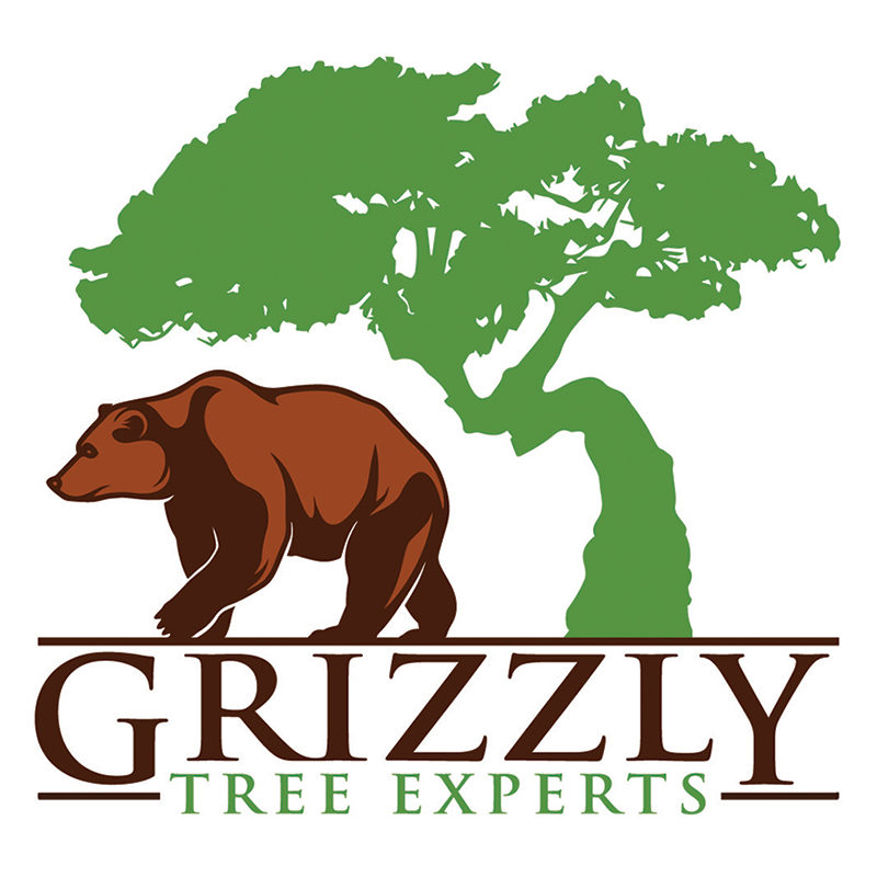 Grizzly logo 800 x 800.jpg