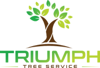cropped-triumph-Tree2.png