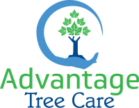 Advantage Tree Care vector logo 2018 CC.png