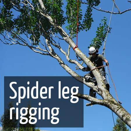Rigging using a spider leg