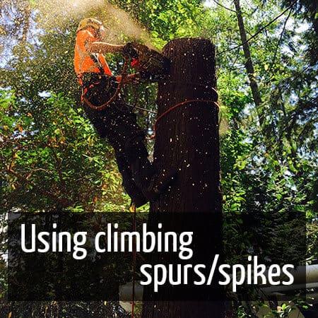 Using climbing spurs/spikes