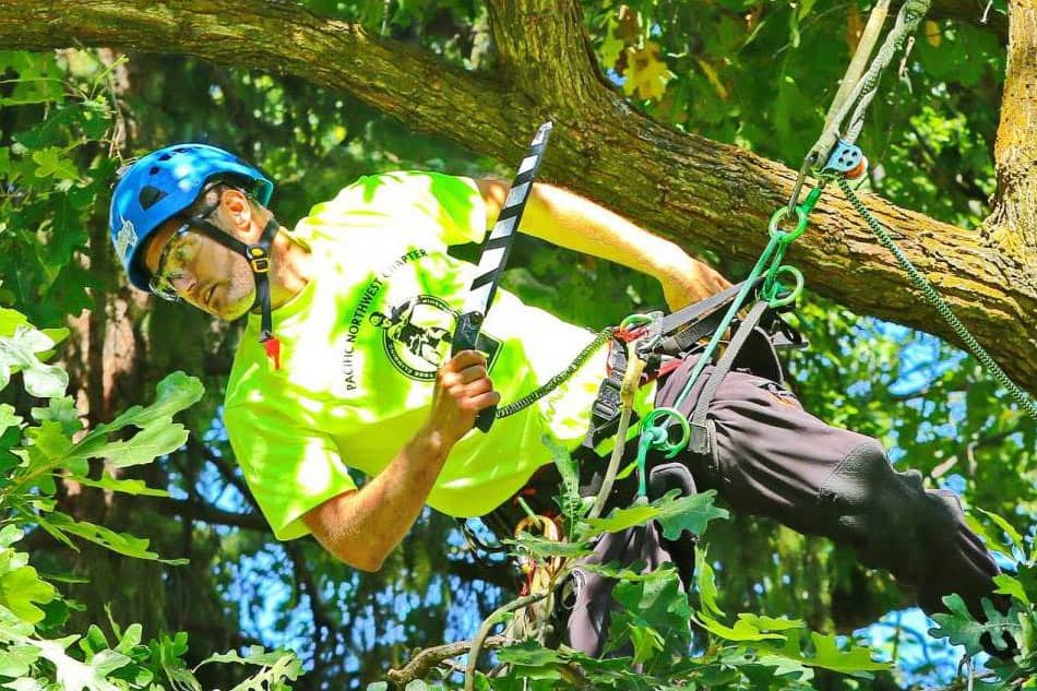 Dan Holliday climbing at the Portland tree climbing competition : ClimbingArborist.com