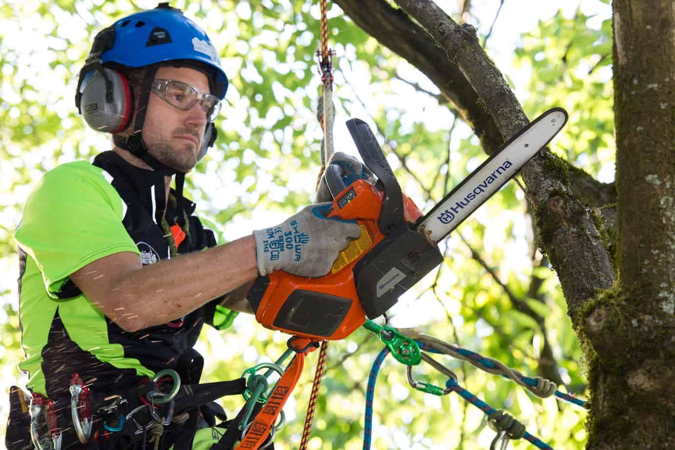 Arborist Dan Holliday using the Husqvarna battery chainsaw