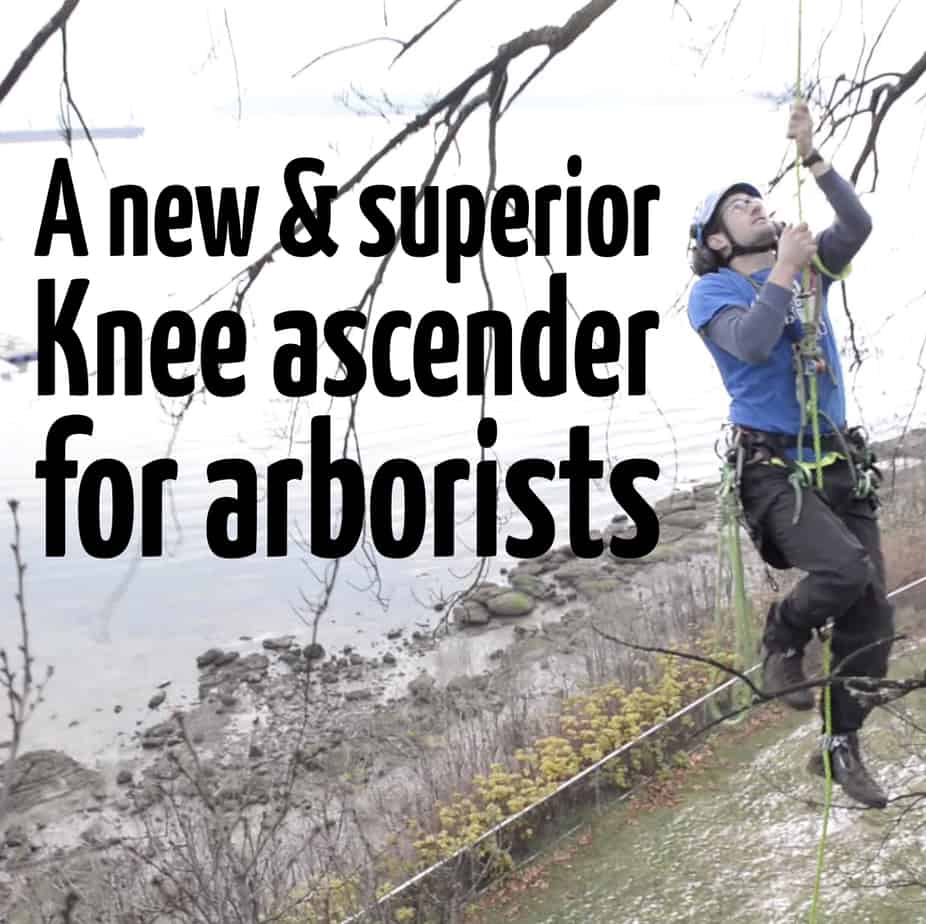 Knee ascender ClimbingArborist.com