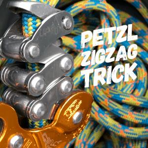Petzl Zigzag trick ClimbingArborist.com