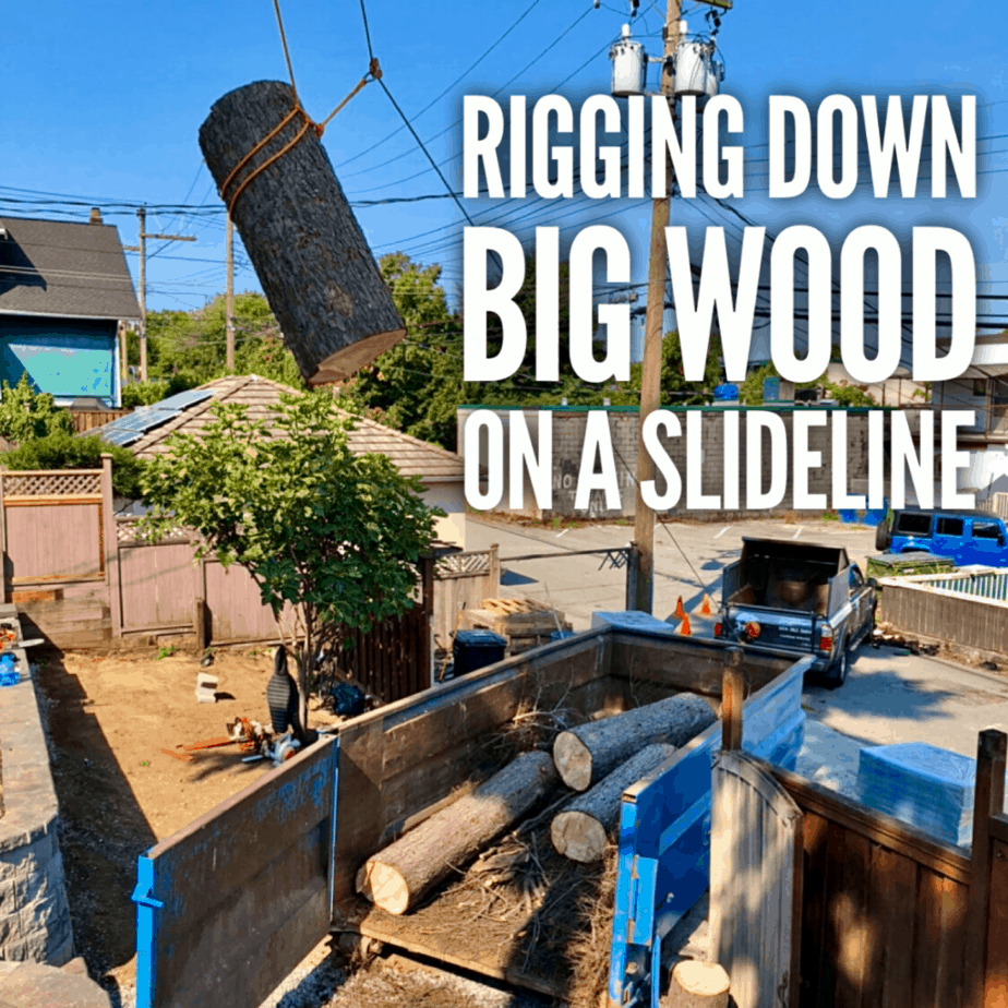 100ft dead Hemlock removal | Rigging down some big wood