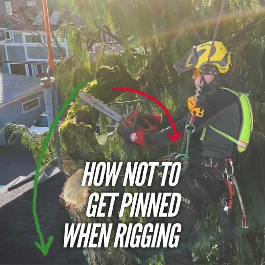 How not to get pinned by a branch when rigging