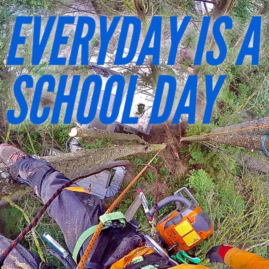 Everyday is a schoolday ClimbingArborist.com