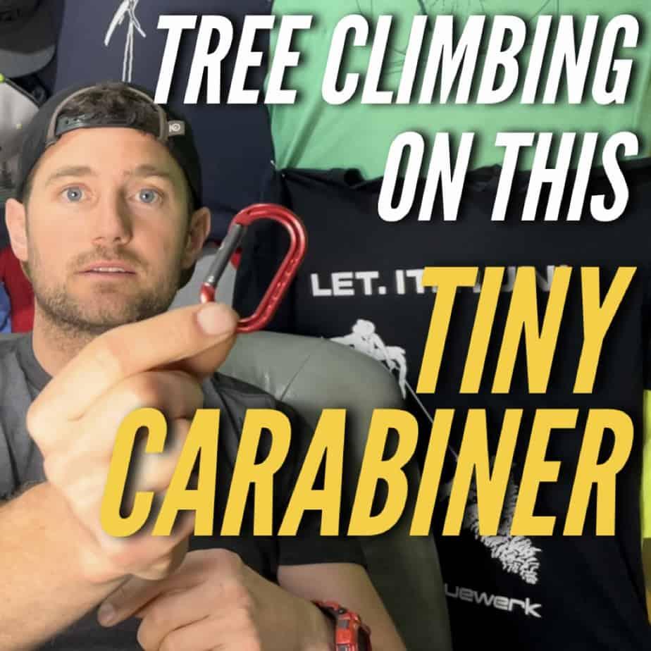Non life support carabiner ClimbingArborist.com