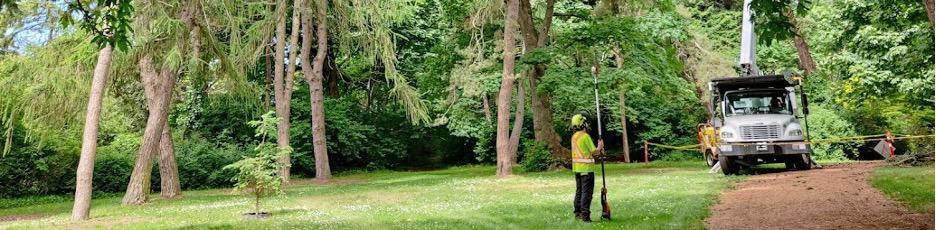 WBC new regulations blog - ClimbingArborist.com